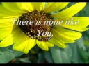 There is none like you