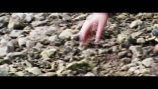 Video Farizeo - Pravdu hľadám márne