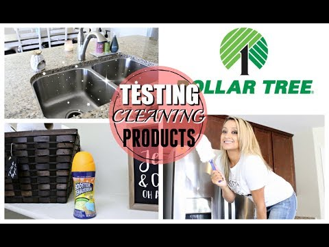 TESTING DOLLAR TREE CLEANING PRODUCTS