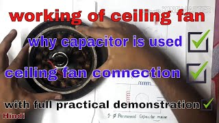 How ceiling fan works | why capacitor is used in fan | working of fan || Hindi