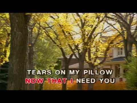 Bee Gees   -  Emotion  ..  KaraokeTubeBox