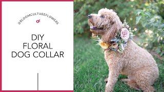 DIY Floral Dog Collar by Bloom Culture