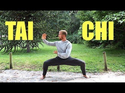 Tai Chi FREE LESSON || 20 Min Tai Chi Routine || Daily Taiji Practice