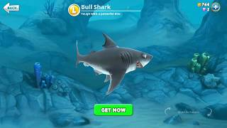hungry shark world, bull shark (3D Motion)