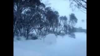 SNOWBALL - DEVO