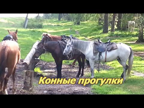 """Видеообзор караван-парка """"Кызыл-Таш"""""""