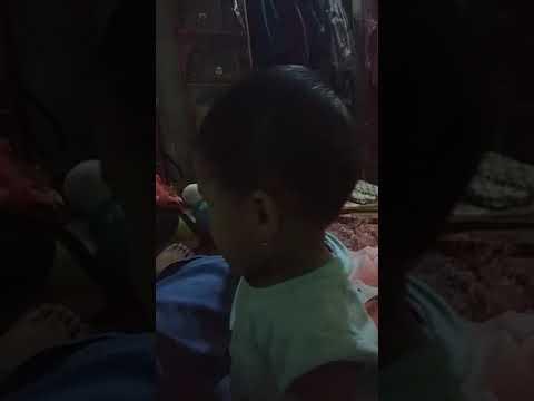 bayi pintar menirukan suara sapi (ayesha azkadina)