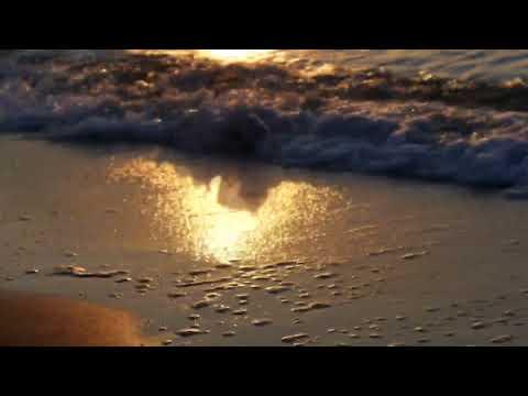 Шум моря и чайки. Релаксация для здоровья нервной системы