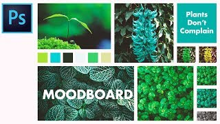 How To Make A Moodboard In Photoshop - Basic Tutorial