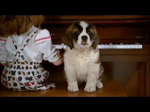Beethoven (1992)- Beethoven As Puppy Scene Mp3