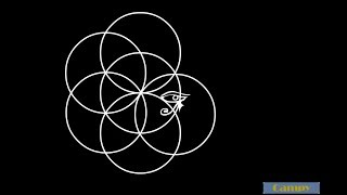 Myth Of Creation - The Flower Of Life