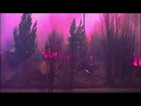 Пламя подходит к домам: на видео попал пожар на левом берегу Воронежа