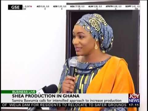 Shea Production in Ghana - Business Live on JoyNews (12-10-18)