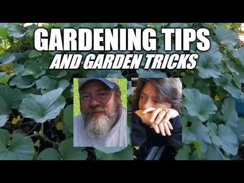 Gardening Tips And Garden Tricks | Part 1
