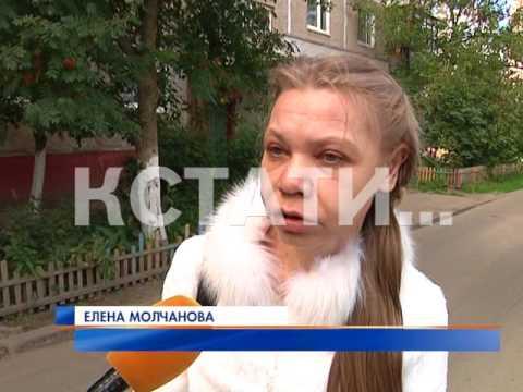 Конский возбудитель купить в москве в аптеке цена