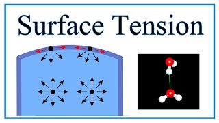 Surface Tension of Water Explained