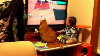 Смотреть онлайн Кот и малыш очень увлечены телевизором