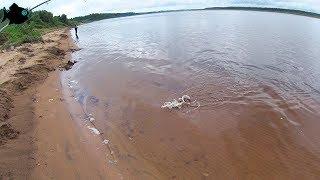 Ловля спиннингом с берега на северной двине