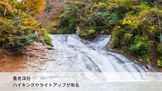 千葉紅葉スポットドライブで絶景を満喫「養老渓谷コース」