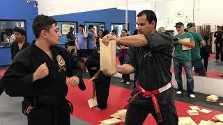 Black Belt Appreciation Day