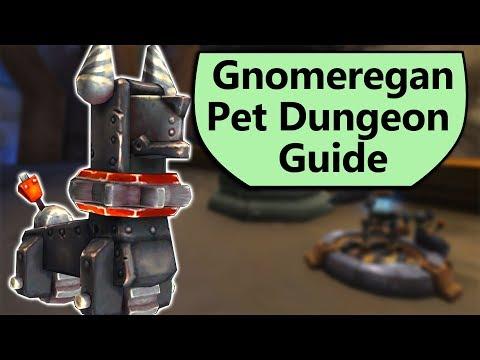 Gnomeregan Pet Dungeon Complete Guide