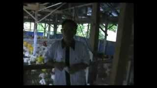 preview picture of video 'PRONTECH BROILER JEPARA'