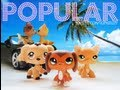 Littlest Pet Shop: Popular (Episode #1: Who's That Girl?)