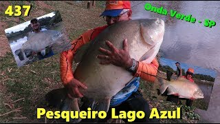 Os Tambas gigantes do Lago Azul - Fishingtur na TV 437