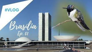 Passarinhando em BRASÍLIA- EP. 1 Praça dos Cristais e Altiplano Leste