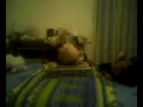 Video 12 14 Sex