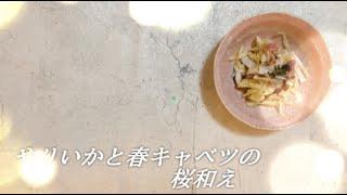 宝塚受験生のダイエットレシピ〜ヤリイカと春キャベツの桜和え〜のサムネイル