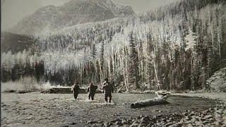 Народ и в глуши выживет если власть прижмёт 生活 Russians survive in forest if government be insane