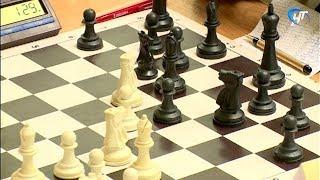 В Новгороде проходит ежегодный шахматный фестиваль «Господин Великий Новгород»