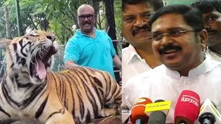 TTV Dinakaran Trolls Ministers புலிக்கு பின்னாடி பதுங்கிய மைக் குமார் எங்கே | nba 24x7