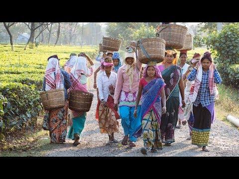 Weltmissionssonntag 2019 - Der Nordosten Indiens