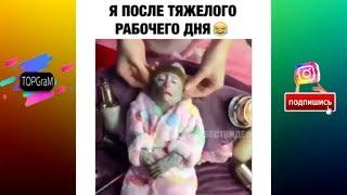 TOPGraM - Приколы и Vine - Боится Пчел   Во Все Тяжкие [Выпуск 5] - сентябрь 2017