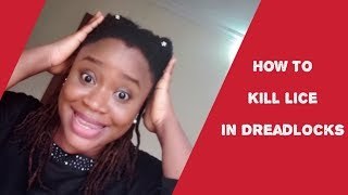 HOW TO REMOVE HEAD-LICE AND NITS IN LOCS WITHOUT CUTTING LOCS (DREADLOCK CENTRIC)