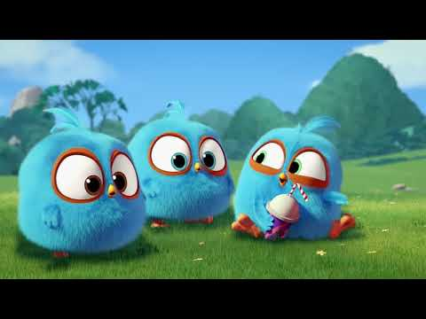 Download Angry Birds Blues Hatch Off S1 Ep5 Video 3GP Mp4