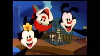 Animaniacs - Pinky and the Brain Theme Song