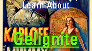 What is Gelignite?   How to Say Gelignite in English?   How Does Gelignite Look?