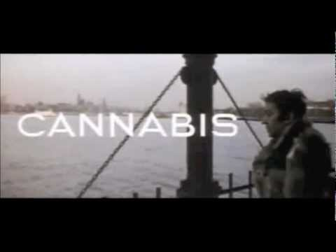 Love is Over - Cannabis (Serge Gainsbourg Cover)