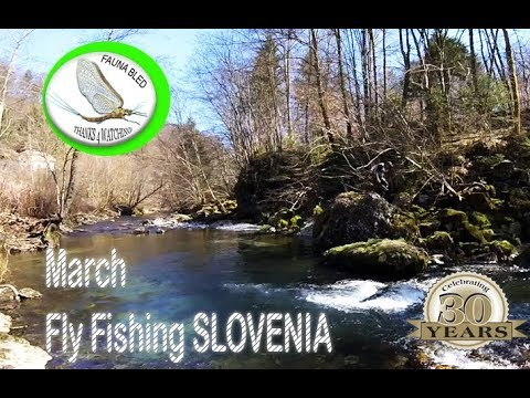 Spring time Fly Fishing Slovenia - warming up!