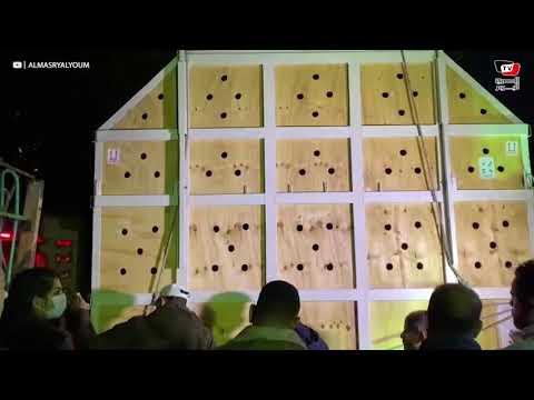أول فيديو من داخل بيت الزرافات الجديدة في حديقة الحيوان بالجيزة
