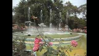 preview picture of video 'raj bhawan ranchi water fall'