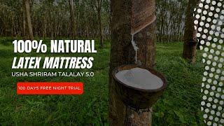 Natural Latex Hygienic Mattress – Usha Mattress