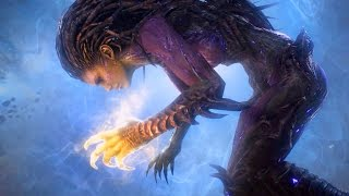 Essence of Eternity: Kerrigan Becomes Xel'naga (Starcraft 2 Epilogue | Raynor | Void)