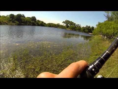 GoPro Pond Bass Fishing!
