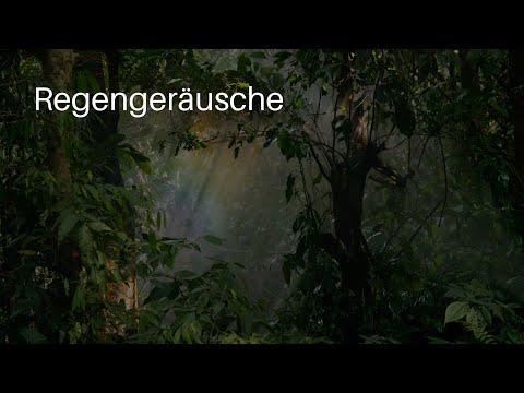 Regengeräusche - Natur Meditation - Regenwald Sounds und Regen - Regenfall zur Entspannung