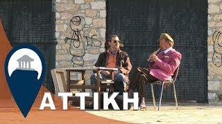 Αττική | Ανοικτοί χώροι της Αθήνας | Άλσος Βεϊκου στο Γαλάτσι