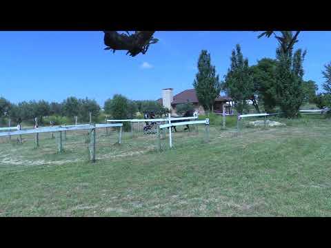 Campeonato Navarro de Enganches 240618 Video 5
